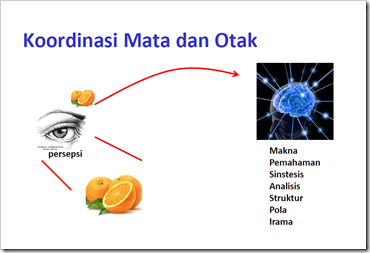 hubungan-mata-otak-1