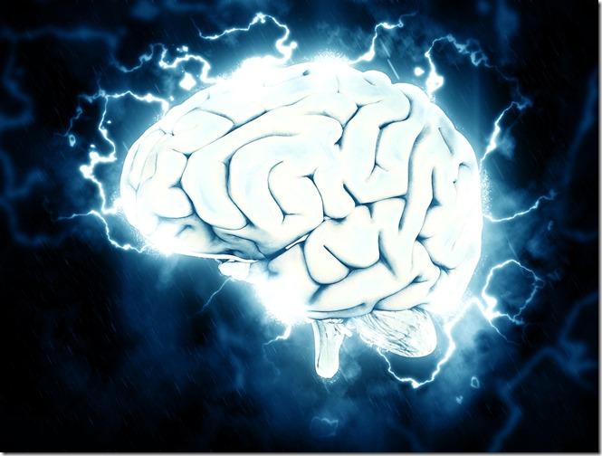 otak manusia dan membaca